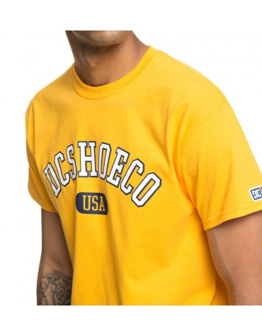 T-shirt DCSHOES Arch Col rond