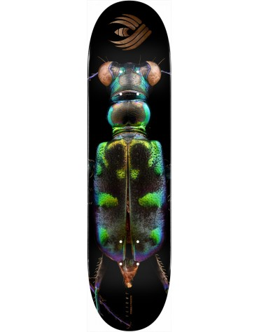 POWELL PERALTA DECK FLIGHT BISS TIGER BEETLE 8.25